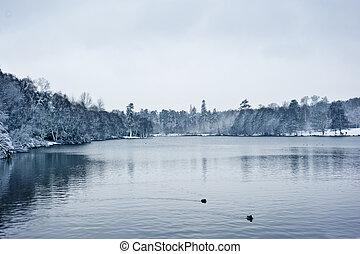 winterlandschaft, see