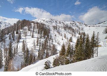 winterlandschap, alpien