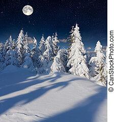 winterlandschap, in de bergen, met, volle, moon.
