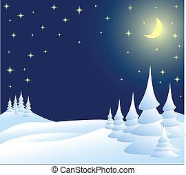 winterlandschap, kerstmis