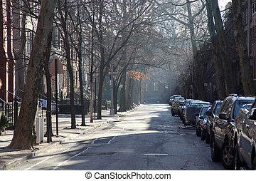 winterlight on brooklyn street during morning