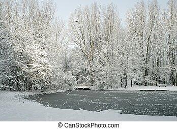 wintertime in park
