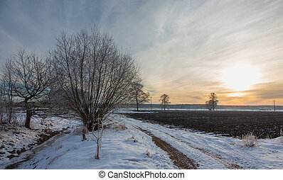 Wintertime sunset over meadow