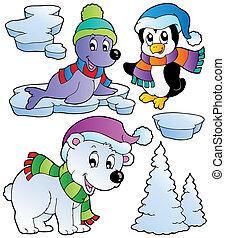 wintertime, zwierzęta, zbiór, 2