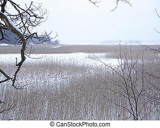 Wintery seashore - Helsinki seashore wintertime