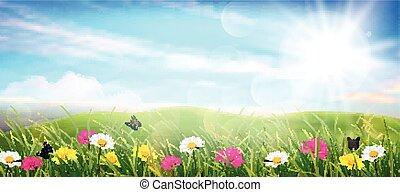 wiosna, łąka, piękny