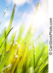 wiosna, abstrakcyjny, tło, natura