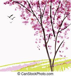 wiosna, drzewo, rozkwiecony