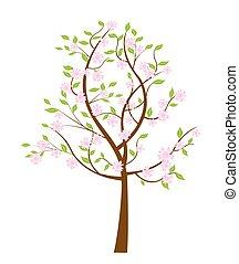 wiosna, flowering, drzewo.