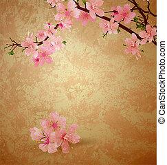 wiosna, kwiat, wiśniowe drzewo, i, różowe kwiecie, na, brązowy, stary, papier, grunge, tło