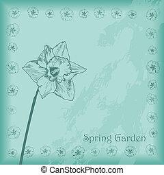 wiosna, ogród