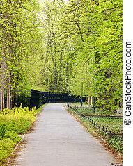 wiosna, park, czas