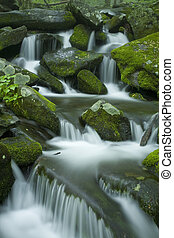 wiosna, potok, gsmnp, krajobraz