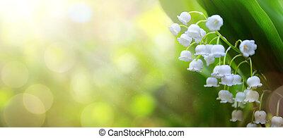 wiosna, sztuka, abstrakcyjny, kwiaty, tło, biały, świeży
