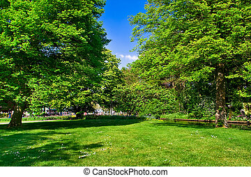 wiosna, time., barwny, park