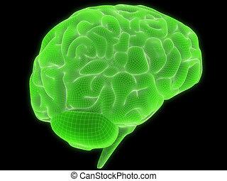 wire brain