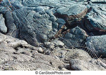 Wire fence destroyed by advancing lava in the town of Pahoa,...
