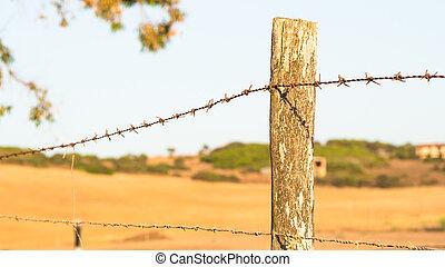 Wire Mesh - point of view - Wire Mesh - Point of view