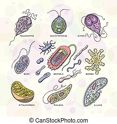 wirus, wektor, bakteryjny, zakażenie, virus-like, choroba,...