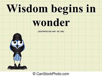 Wisdom begins in wonder ancient Greek quotation relating to...