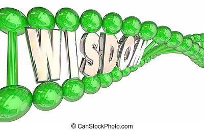 Wisdom Smarts Intelligence Hereditary DNA Word 3d Illustration