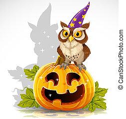 Wise magician owl sit on a pumpkin