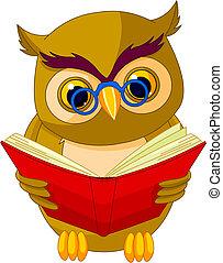 Wise Owl Cartoon - Fully editable vector illustration of a ...