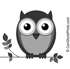 Wise owl on branch isolated on white background
