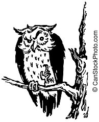 Wise owl on the branch