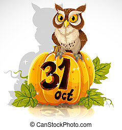 Wise owl sit on a pumpkin
