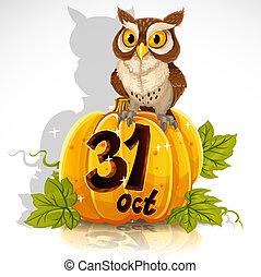 Wise owl sit on a pumpkin