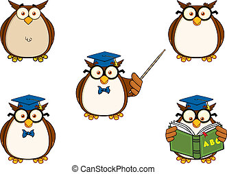 Wise Owl Teacher 1. Collection Set
