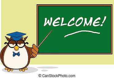 Wise Owl Teacher Cartoon Character In Front Of School Chalk...