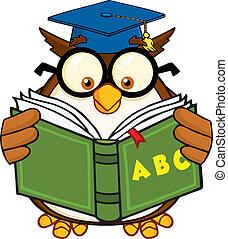 Wise Owl Teacher