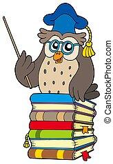 Wise owl teacher on books - isolated illustration.