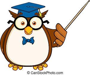 Wise Owl Teacher With A Pointer - Wise Owl Teacher Cartoon...