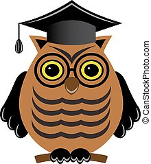 wise owl with glasses and a graduate hat on a white...