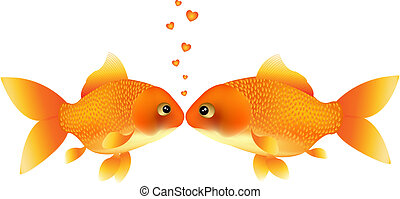 Wish Of Love - Two Goldfishes Kissing, Isolated On White