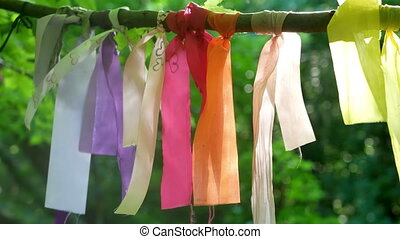 Wish tree colored ribbons - Wish tree with colored ribbons