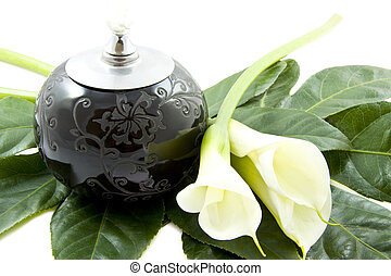 Wish you were here - Black oil lamp on green leaf with white...