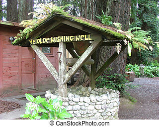 Wishing Well - A wishing well in the forest