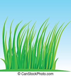 wisp, grass., lussureggiante