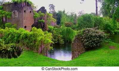 wisteria flowers in 4k fairy castle garden of ninfa in Italy...