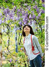 wisteria trellis. great views of Taiwan