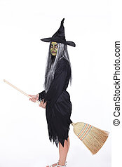Witch broom mounted