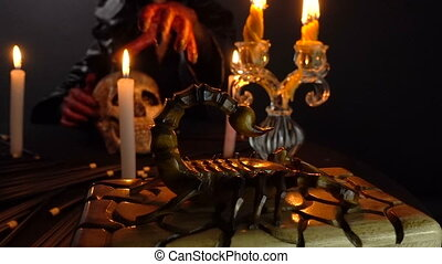 Witch, scorpion and ritual - Footage of woman during ritual...