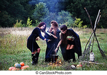 witches preparing a potion