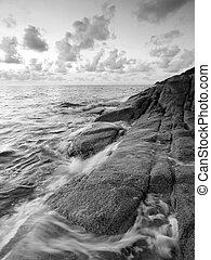 wite rots, zwarte zee, morgen