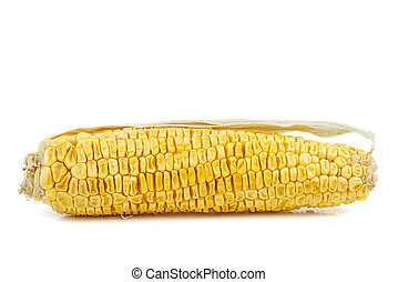 Withered corn cob with dry leaves isolated on white background