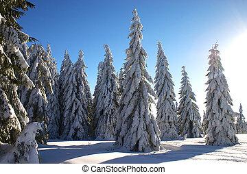 witn, raio sol, paisagem inverno